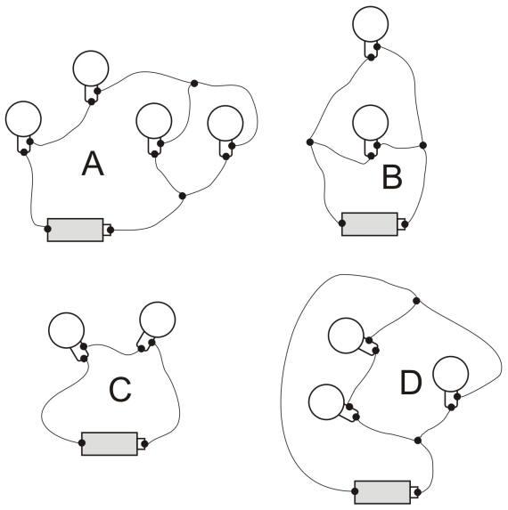 circuit worksheet Termolak – Circuit Worksheet